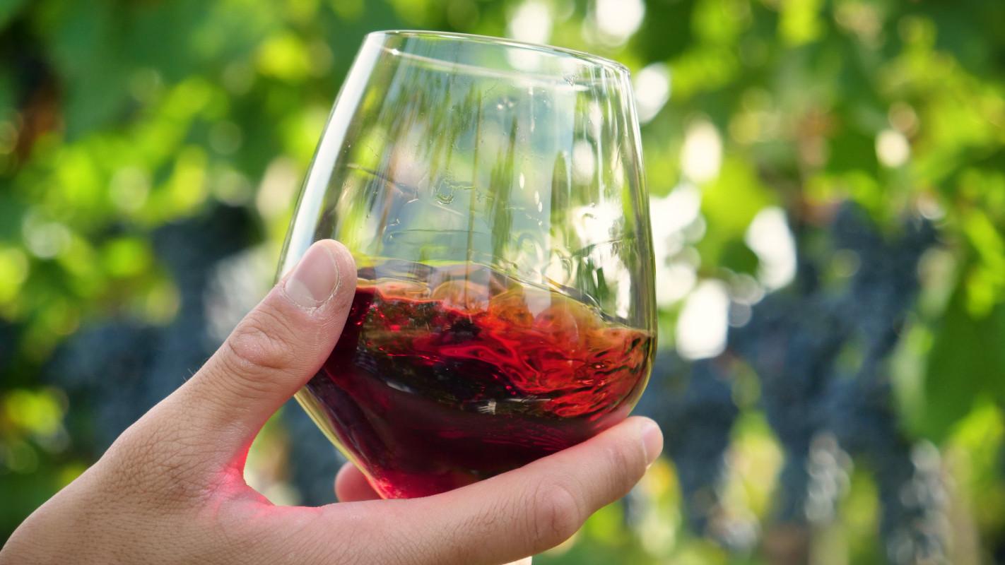 tagAlt.vino rosso campagna