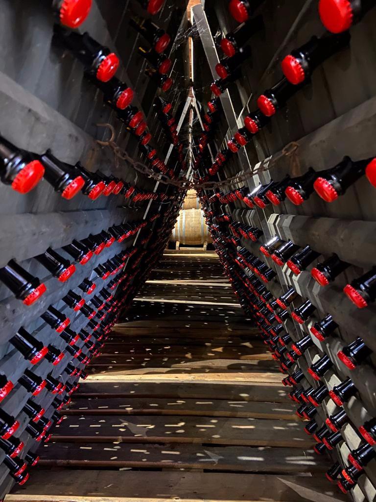 Oltrepò-Sparkling-wine_20210910
